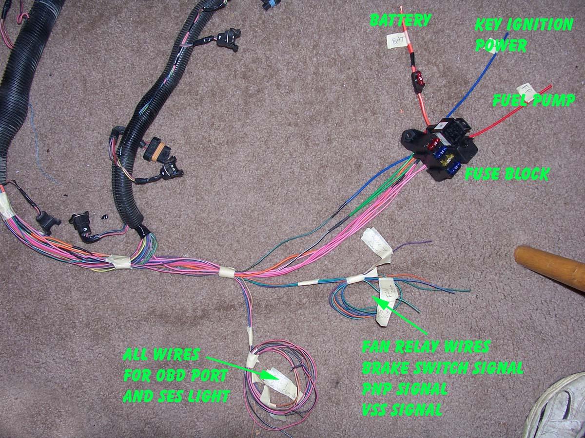 1995 Impala SS, Caprice, Roadmaster wire harness infoLT1 Swap